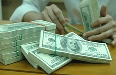 Foreign reserves hit record high of 57 billion USD