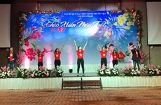 Vietnamese embassies celebrate Lunar New Year