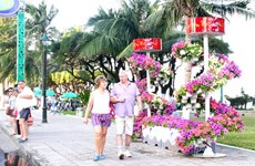 Foreign tourists flock to Nha Trang to celebrate Tet