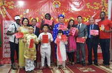 Overseas Vietnamese host activities to welcome Tet