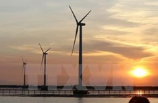 Vietnam sees boom in renewable energy projects