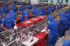 Exports of tra fish to UK increase