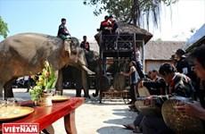 Flow of tourists to Dak Lak surges 20 percent during Tet