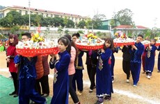 Tay minority in Tuyen Quang celebrates Long Tong festival