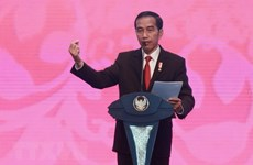 Ruling Indonesia party endorses Widodo as presidential candidate