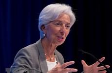 IMF praises Indonesia's strong economy