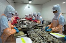 Ba Ria-Vung Tau seeks to tackle investment hindrances