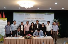 Vietnam, Good Neighbors International work to improve cooperatives