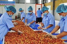 Solutions sought to reduce food losses
