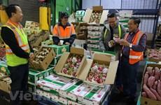 Vietnam-Australia trade gains speed in early 2018