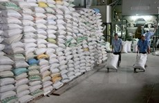 Japonica rice to become one of main rice varieties for export