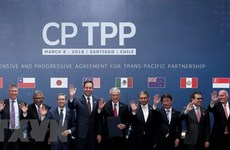 Domestic businesses expect positive impacts by CPTPP