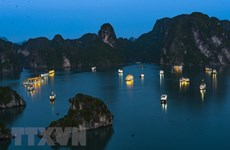 Businesses urged to protect Ha Long Bay