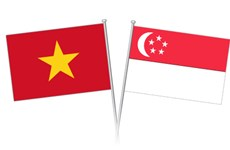 Singaporean businesses interested in food industry, agriculture in Vietnam