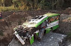 Philippine bus accident leaves 19 dead, 25 injured