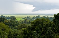 Laos signs Asian Forest Cooperation Organisation agreement