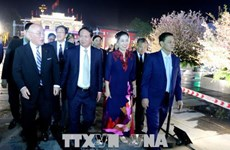 Vietnam-Japan culture exchange opened in Hai Phong