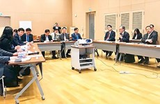 Vietnamese, Japanese universities seek partnership