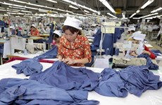 Vietnam-France bilateral trade enjoys continuous growth