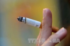 HCM City to enhance tobacco harm control