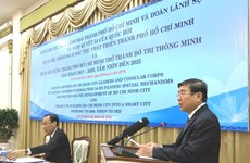 Consuls general updated on special policies for HCM City's development