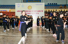 First festival of Vietnam's martial arts wraps up