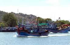Tien Giang develops offshore fishing fleet