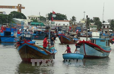 Vietnam to impose harsh punishments on illegal fishing
