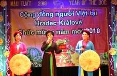Poll: More Czechs fond of Vietnamese community