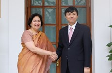 Vietnam, India hold 10th political consultation, 7th strategic dialogue