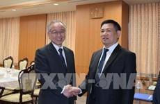 Vietnam, Japan audit agencies urged to lift cooperative ties