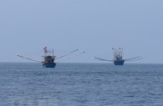Quang Tri joins national efforts to combat illegal fishing