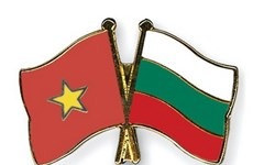 Vietnam-Bulgaria Friendship Association elects new Chair