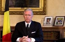 Belgium-Vietnam ties develop fruitfully, says King Philippe