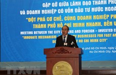 HCM City calls on FDI firms to support local sustainable development