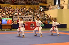 Vietnam wins 29 golds at regional karate tourney