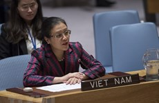 Vietnam calls on UN Security Council to solve Israel-Palestine conflict