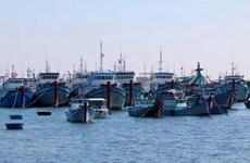 Phu Yen fishermen urged to maintain fishing activities