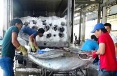 EC delegation to inspect IUU fishing in Vietnam