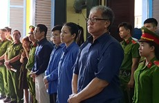 Trial held for former Dai Tin Bank leaders