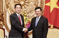 LDP official: Vietnam's development important to Japan
