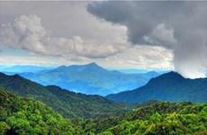 National Park draws visitors to Thua Thien – Hue
