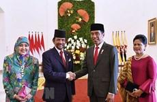 Indonesia, Brunei boost multi-faceted cooperation