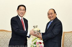 PM: Vietnam treasures strategic partnership with Japan