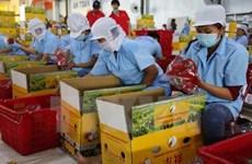Fruit-vegetable surpasses crude oil in export earnings