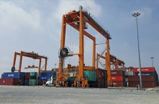 Nam Dinh Vu deep-water port put into use in Hai Phong