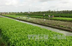 Tra Vinh calls for investment in industrial, agricultural projects