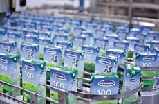Platinum Victory to raise Vinamilk's ownership to 11 percent