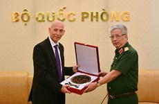 Vietnam, Israel intensify defence collaboration