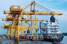 Hai Phong Int'l Container Terminal to welcome first ship